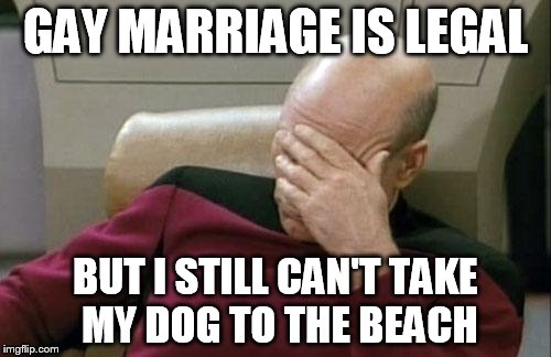 Captain Picard Facepalm Meme | GAY MARRIAGE IS LEGAL BUT I STILL CAN'T TAKE MY DOG TO THE BEACH | image tagged in memes,captain picard facepalm | made w/ Imgflip meme maker