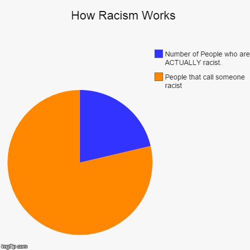 How Racism Works | People that call someone racist, Number of People who are ACTUALLY racist. | image tagged in funny,pie charts | made w/ Imgflip chart maker