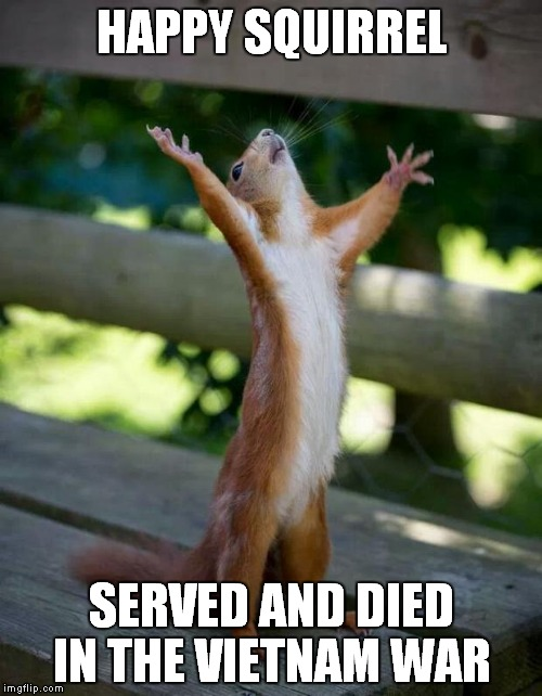 Happy Squirrel | HAPPY SQUIRREL SERVED AND DIED IN THE VIETNAM WAR | image tagged in happy squirrel | made w/ Imgflip meme maker