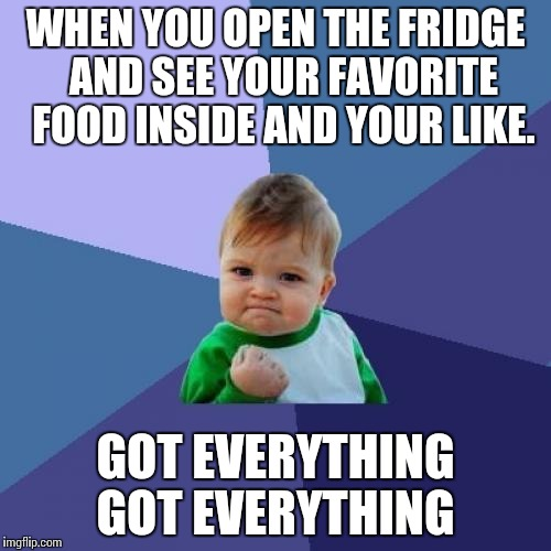 Success Kid Meme | WHEN YOU OPEN THE FRIDGE  AND SEE YOUR FAVORITE  FOOD INSIDE AND YOUR LIKE. GOT EVERYTHING  GOT EVERYTHING | image tagged in memes,success kid | made w/ Imgflip meme maker