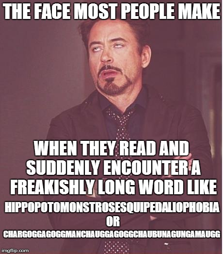 Long words | THE FACE MOST PEOPLE MAKE WHEN THEY READ AND SUDDENLY ENCOUNTER A FREAKISHLY LONG WORD LIKE HIPPOPOTOMONSTROSESQUIPEDALIOPHOBIA OR CHARGOGGA | image tagged in memes,face you make robert downey jr | made w/ Imgflip meme maker