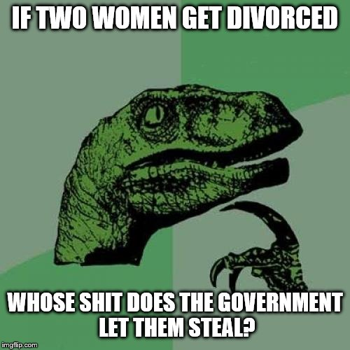 Philosoraptor Meme | IF TWO WOMEN GET DIVORCED WHOSE SHIT DOES THE GOVERNMENT LET THEM STEAL? | image tagged in memes,philosoraptor | made w/ Imgflip meme maker