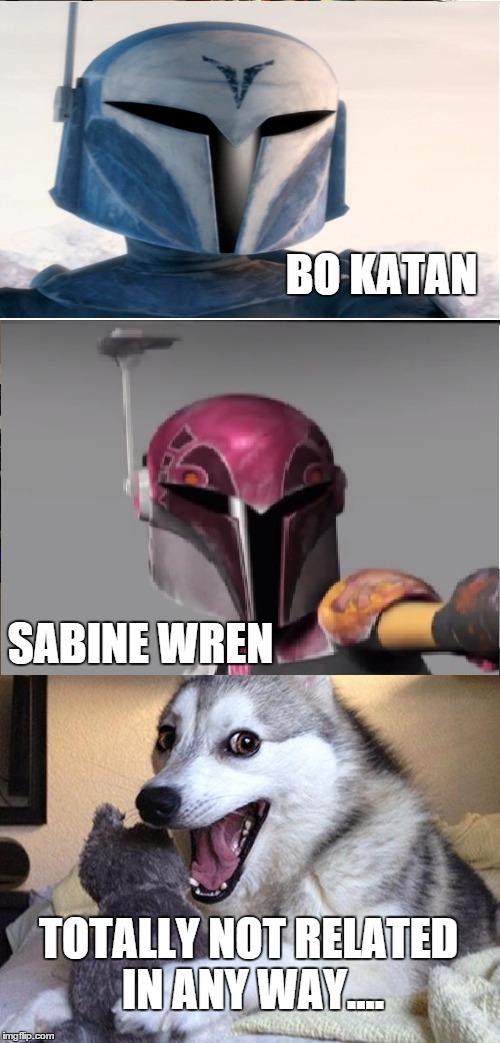 nkylm bad pun dog meme imgflip,Sabine Meme