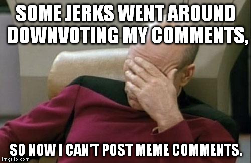 I understand the point of the comment reputation thing, but this is just absurd. | SOME JERKS WENT AROUND DOWNVOTING MY COMMENTS, SO NOW I CAN'T POST MEME COMMENTS. | image tagged in memes,captain picard facepalm | made w/ Imgflip meme maker