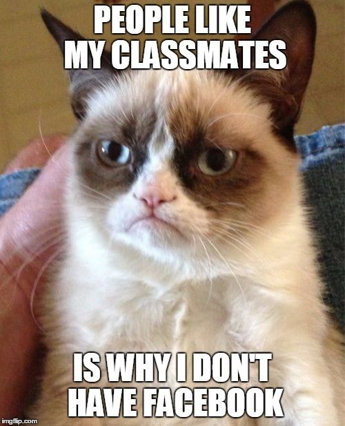 Grumpy Cat Meme | PEOPLE LIKE MY CLASSMATES IS WHY I DON'T HAVE FACEBOOK | image tagged in memes,grumpy cat | made w/ Imgflip meme maker