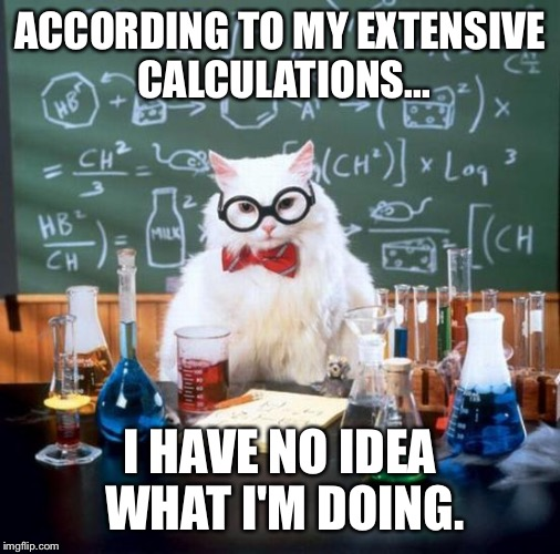 Chemistry Cat | ACCORDING TO MY EXTENSIVE CALCULATIONS... I HAVE NO IDEA WHAT I'M DOING. | image tagged in memes,chemistry cat | made w/ Imgflip meme maker