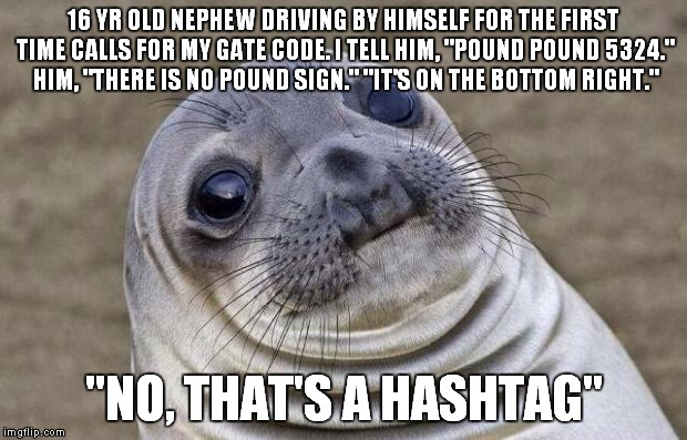 "Awkward Moment Sealion Meme | 16 YR OLD NEPHEW DRIVING BY HIMSELF FOR THE FIRST TIME CALLS FOR MY GATE CODE. I TELL HIM, ""POUND POUND 5324."" HIM, ""THERE IS NO POUND SIGN. 