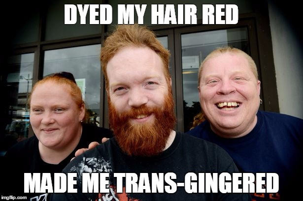 Transgingered | DYED MY HAIR RED MADE ME TRANS-GINGERED | image tagged in ginger | made w/ Imgflip meme maker