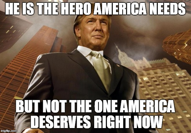 Image result for trump the hero we need