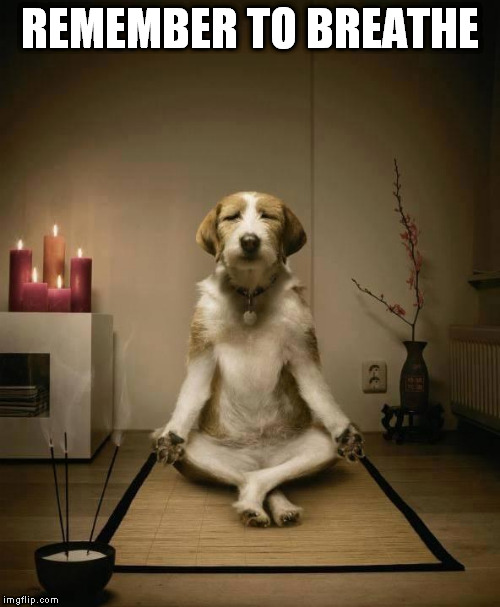 nptpr meditation imgflip