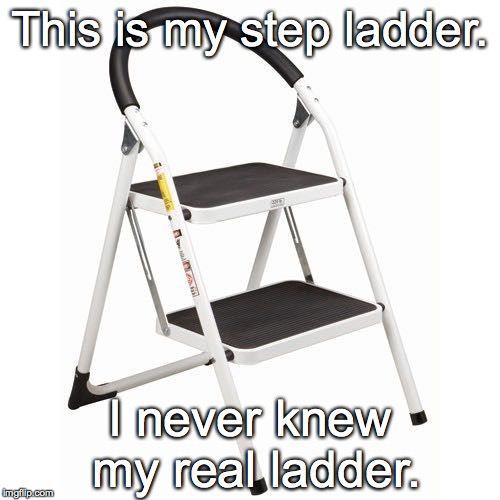 Love my step ladder as much as I would my real ladder. | This is my step ladder. I never knew my real ladder. | image tagged in step ladder,funny meme,somewhat funny | made w/ Imgflip meme maker