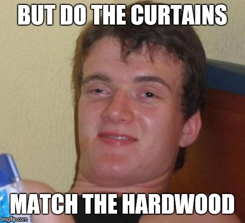 10 Guy Meme | BUT DO THE CURTAINS MATCH THE HARDWOOD | image tagged in memes,10 guy | made w/ Imgflip meme maker