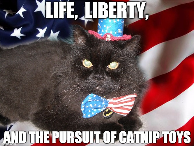 AmeriCat's favorite day | LIFE,  LIBERTY, AND THE PURSUIT OF CATNIP TOYS | image tagged in americat,cats,funny cats,america,fourth of july | made w/ Imgflip meme maker