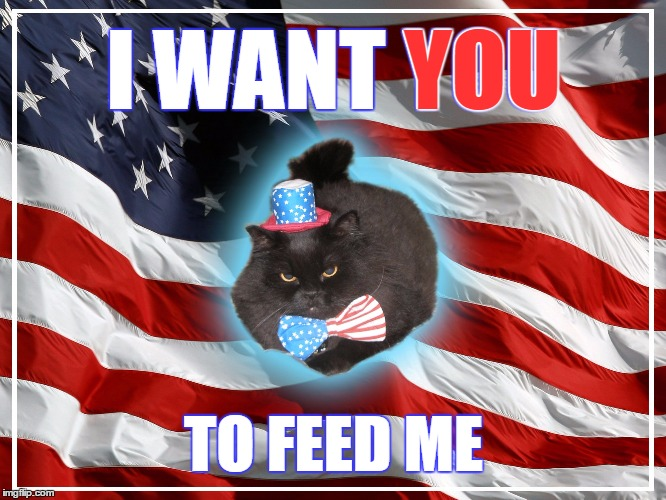 AmeriCat wants you! | I WANT YOU TO FEED ME YOU | image tagged in americat,america,american flag,cats,funny cats | made w/ Imgflip meme maker
