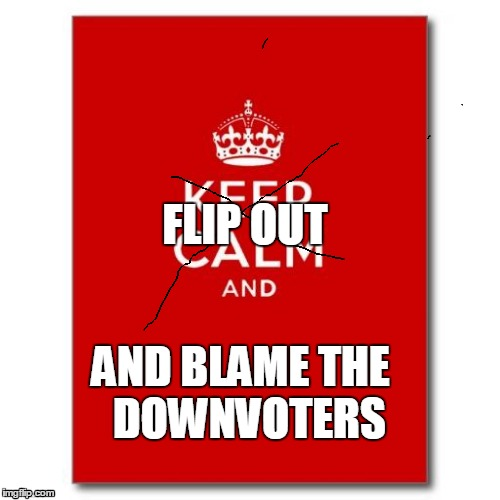 Flip Out | FLIP OUT AND BLAME THE DOWNVOTERS | image tagged in flip out,downvoters,blaming | made w/ Imgflip meme maker