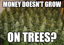 Money Doesnt Grow On Trees
