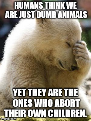 Facepalm Bear | HUMANS THINK WE ARE JUST DUMB ANIMALS YET THEY ARE THE ONES WHO ABORT THEIR OWN CHILDREN. | image tagged in memes,facepalm bear | made w/ Imgflip meme maker