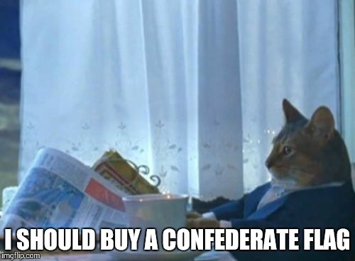 I Should Buy A Boat Cat Meme | I SHOULD BUY A CONFEDERATE FLAG | image tagged in memes,i should buy a boat cat | made w/ Imgflip meme maker