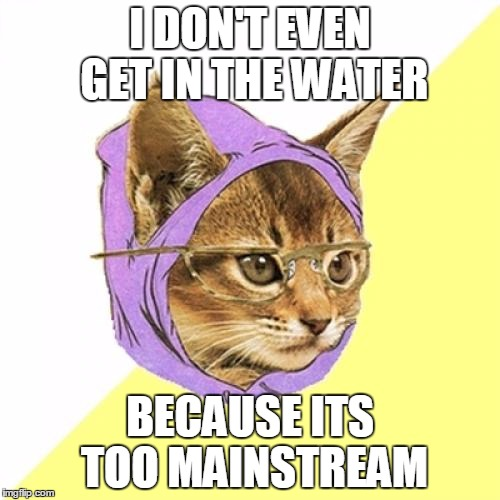 Hipster Kitty | I DON'T EVEN GET IN THE WATER BECAUSE ITS TOO MAINSTREAM | image tagged in memes,hipster kitty | made w/ Imgflip meme maker