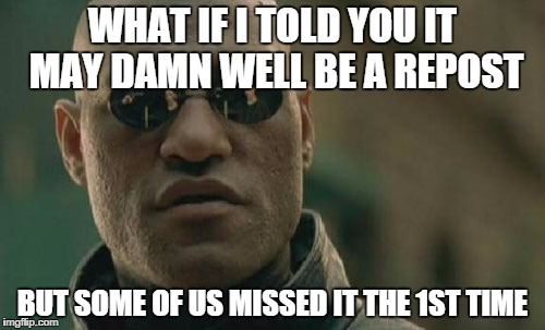 Matrix Morpheus Meme | WHAT IF I TOLD YOU IT MAY DAMN WELL BE A REPOST BUT SOME OF US MISSED IT THE 1ST TIME | image tagged in memes,matrix morpheus | made w/ Imgflip meme maker