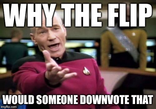 Picard Wtf Meme | WHY THE FLIP WOULD SOMEONE DOWNVOTE THAT | image tagged in memes,picard wtf | made w/ Imgflip meme maker