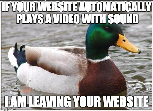 Actual Advice Mallard Meme | IF YOUR WEBSITE AUTOMATICALLY PLAYS A VIDEO WITH SOUND I AM LEAVING YOUR WEBSITE | image tagged in memes,actual advice mallard,AdviceAnimals | made w/ Imgflip meme maker