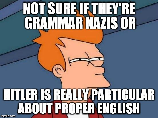 Futurama Fry Meme | NOT SURE IF THEY'RE GRAMMAR NAZIS OR HITLER IS REALLY PARTICULAR ABOUT PROPER ENGLISH | image tagged in memes,futurama fry | made w/ Imgflip meme maker