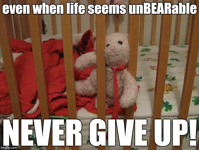 nvn2p image tagged in teddy,bear,original meme,meme,never give up,funny