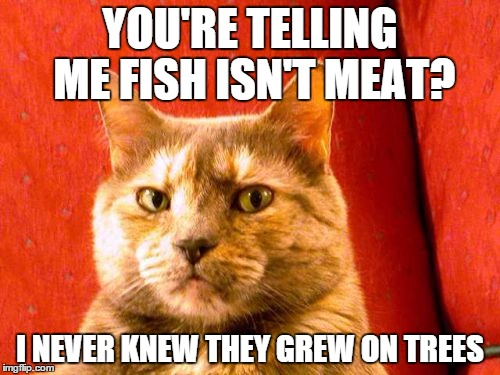 Suspicious Cat | YOU'RE TELLING ME FISH ISN'T MEAT? I NEVER KNEW THEY GREW ON TREES | image tagged in memes,suspicious cat | made w/ Imgflip meme maker