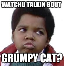 WATCHU TALKIN BOUT GRUMPY CAT? | made w/ Imgflip meme maker