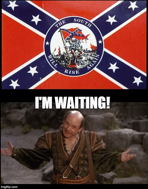The South Will Rise Again... | I'M WAITING! | image tagged in confederate flag,confederate,civil war,southern flag,princess bride,inigo montoya | made w/ Imgflip meme maker