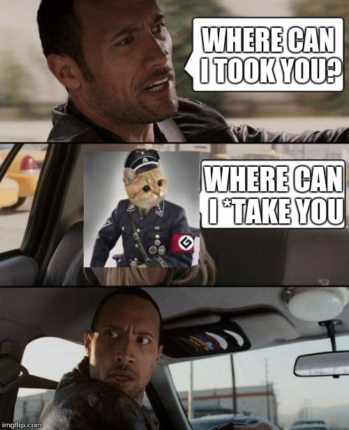Grammar Nazi Cat needs a taxi... | WHERE CAN I TOOK YOU? WHERE CAN I *TAKE YOU | image tagged in memes,the rock driving,grammar nazi cat | made w/ Imgflip meme maker