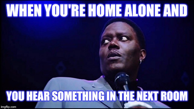 WHEN YOU'RE HOME ALONE AND YOU HEAR SOMETHING IN THE NEXT ROOM | image tagged in funny | made w/ Imgflip meme maker