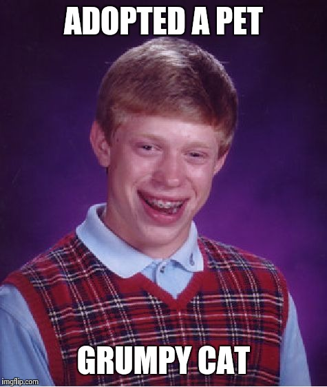 Bad Luck Brian Meme | ADOPTED A PET GRUMPY CAT | image tagged in memes,bad luck brian | made w/ Imgflip meme maker