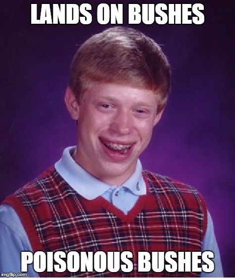 Bad Luck Brian Meme | LANDS ON BUSHES POISONOUS BUSHES | image tagged in memes,bad luck brian | made w/ Imgflip meme maker