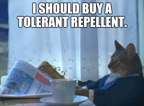 I Should Buy A Boat Cat Meme | I SHOULD BUY A TOLERANT REPELLENT. | image tagged in memes,i should buy a boat cat | made w/ Imgflip meme maker