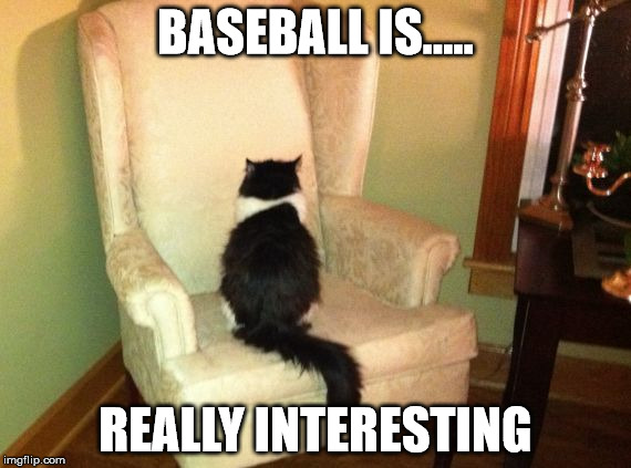 BASEBALL IS..... REALLY INTERESTING | image tagged in interesting cat | made w/ Imgflip meme maker