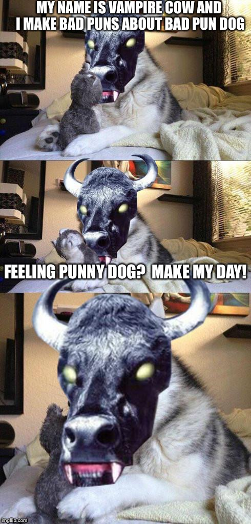bad pun vampire cow | MY NAME IS VAMPIRE COW AND I MAKE BAD PUNS ABOUT BAD PUN DOG FEELING PUNNY DOG?  MAKE MY DAY! | image tagged in bad pun vampire cow | made w/ Imgflip meme maker
