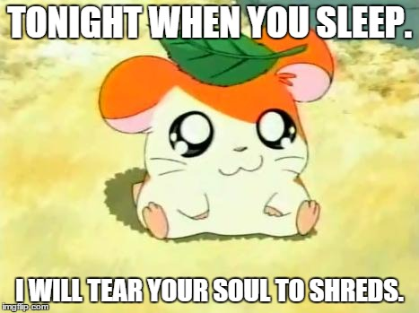Hamtaro | TONIGHT WHEN YOU SLEEP. I WILL TEAR YOUR SOUL TO SHREDS. | image tagged in memes,hamtaro | made w/ Imgflip meme maker
