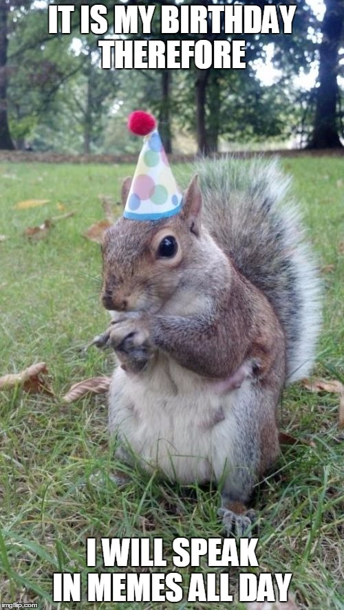 Super Birthday Squirrel | IT IS MY BIRTHDAY THEREFORE I WILL SPEAK IN MEMES ALL DAY | image tagged in memes,super birthday squirrel | made w/ Imgflip meme maker