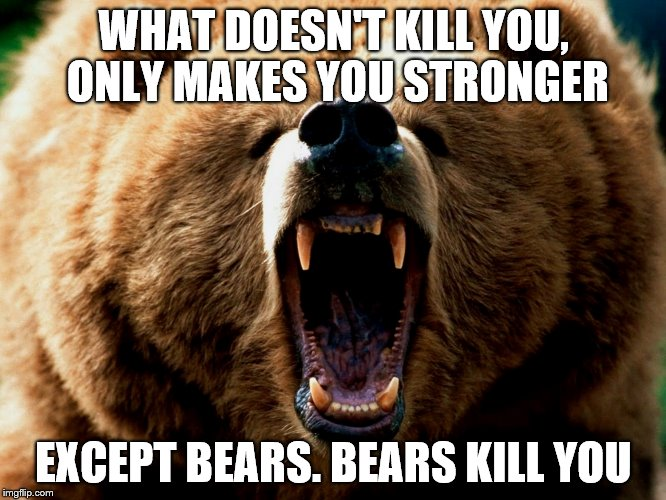 WHAT DOESN'T KILL YOU, ONLY MAKES YOU STRONGER EXCEPT BEARS. BEARS KILL YOU | image tagged in grizzly | made w/ Imgflip meme maker