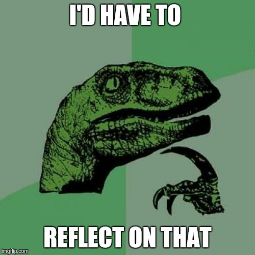 Philosoraptor Meme | I'D HAVE TO REFLECT ON THAT | image tagged in memes,philosoraptor | made w/ Imgflip meme maker