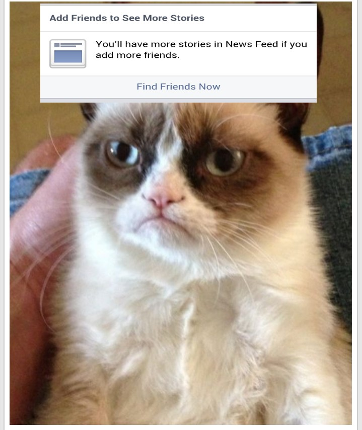 Grumpy Cat no friends Blank Template - Imgflip