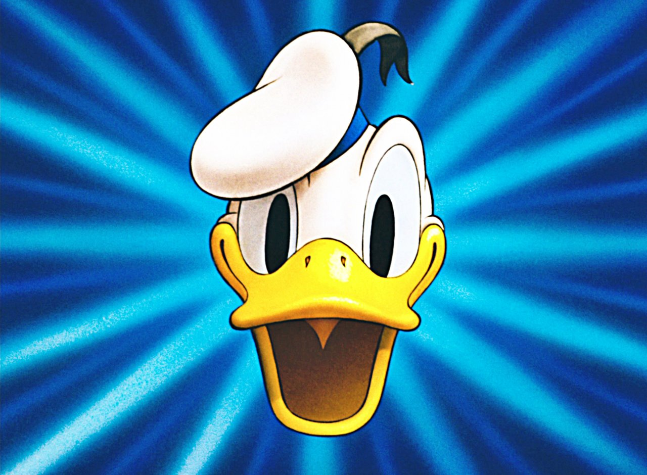donald duck Donald duck is an original disney character he wears a blue sailor's outfit, and can be found steering a boat in the donald's dock playground and sleepwalking in his pajamas in the donald's dreamland playground.
