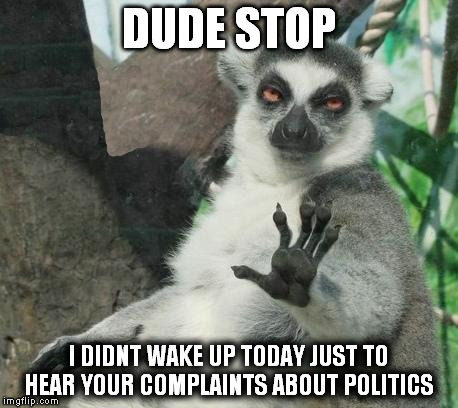 DUDE STOP | DUDE STOP I DIDNT WAKE UP TODAY JUST TO HEAR YOUR COMPLAINTS ABOUT POLITICS | image tagged in memes,stoner lemur,politics | made w/ Imgflip meme maker