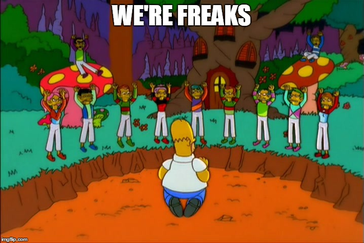 We're Freaks | WE'RE FREAKS | image tagged in simpsons,freaks | made w/ Imgflip meme maker