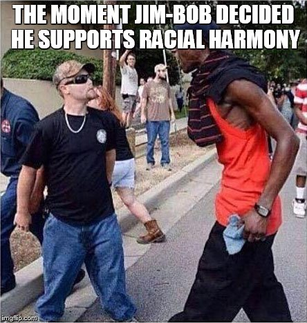 Racial Harmony | THE MOMENT JIM-BOB DECIDED HE SUPPORTS RACIAL HARMONY | image tagged in racial harmony | made w/ Imgflip meme maker