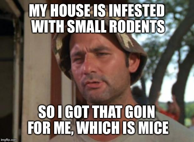 So I Got That Goin For Me Which Is Nice Meme | MY HOUSE IS INFESTED WITH SMALL RODENTS SO I GOT THAT GOIN FOR ME, WHICH IS MICE | image tagged in memes,so i got that goin for me which is nice,AdviceAnimals | made w/ Imgflip meme maker