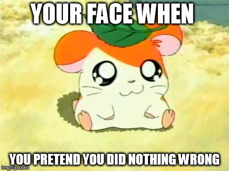 Hamtaro | YOUR FACE WHEN YOU PRETEND YOU DID NOTHING WRONG | image tagged in memes,hamtaro | made w/ Imgflip meme maker