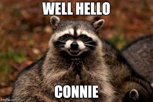 ognhk evil plotting raccoon meme imgflip